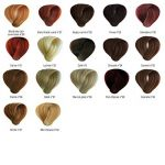 coloration cheveux blond miel TOP 0 image 3 produit